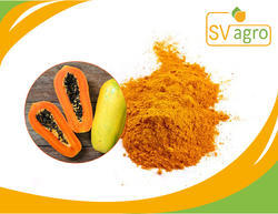 Spray Dried 100% Natural Papaya Powder Extract
