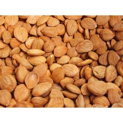WATHEEN Dried APRICOT SEEDS