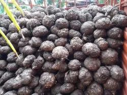 Elephant Foot Yam, Andra, Pesticide Free (for Raw Products)