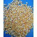 Fresh Corn Maize, Gluten Free, Speciality-protein Rich