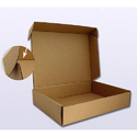 Paper Rectangular Mono Cartons