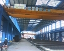 Electric Double Girder Eot Crane