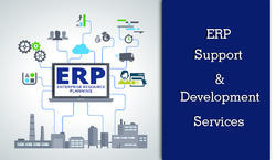 ERP Support & Development Service