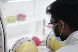 Microorganisms Research Services in India.