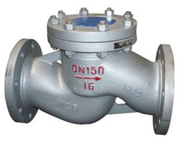 Piston / Lift Type Check Valve