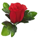 Decoration Craft Polyester Artificial Rose