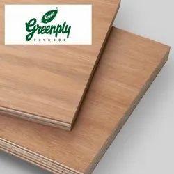 Gurjan Brown BWR Grade Greenply Plywood, Matte, Thickness: 6mm To 25mm