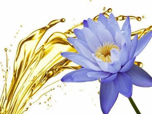 Blue Lotus Absolute Oil At Rs 300 Piece Kannauj Id 16027133062