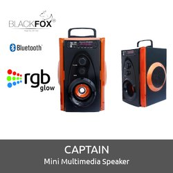 CAPTAIN Mini Multimedia Speaker