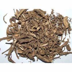 Coleus Dry Root
