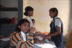 8th Class Educational Services