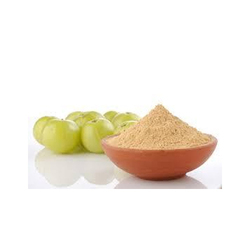 Amla Extract, Pack Size: 5 Kg