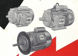 LHP and Crompton Greaves & Havells Single Phase Induction Motor