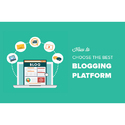 1 - 4 Week Blogging Website Development Services