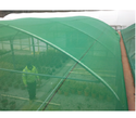 Green Hdpe Plastic Shade Net, Shape: Crop Support Net