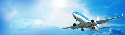 Domestic Air Ticket Booking Services