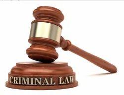 Criminal Law Case Service