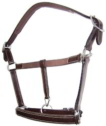 Leather Halter Padded