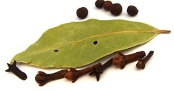 Organic Clove Leaf Oil