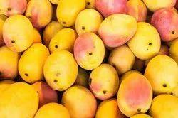 Mango Diffuser Oil