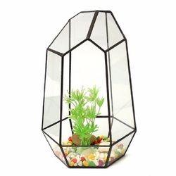 Polyhedron Geometric Terrarium