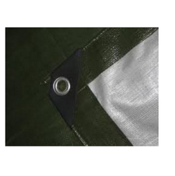 Green Color Tarpaulin