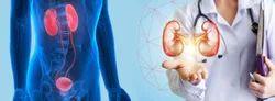 Nephrology Servces