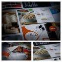 Premium Brochures Printing Services