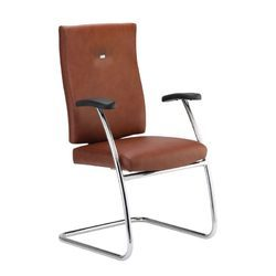 Visitor Brown Color Chair