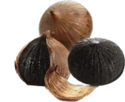 Solo Black Garlic - A Grade Export Quality - Single Clove, Packaging Size : 500gram