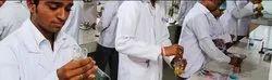Master Of Pharmacy Courses