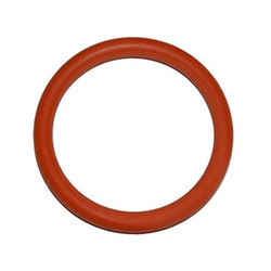 Autoclave And Sterilizer Door Gasket