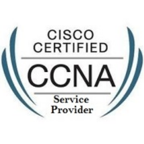 CCNA Service Provider Course, सीसीएनपी सर्विस