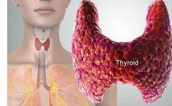 Preventive Thyroid Health