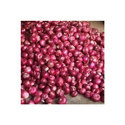 Small Red Onion