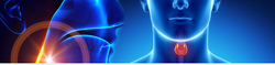 Endocrinology Treatment Services