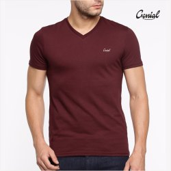 Biowash Cotton V Neck T-shirt For Men