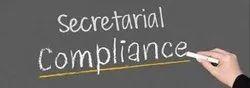 Secretarial Compliance Services