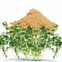 Brahmi Herbal Extract (Water Soluble)