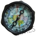 Nautical Marine Compass