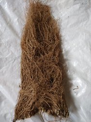 Vetiver (Chrysopogon Zizanioides) (Khasa)
