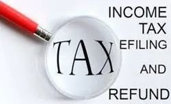 Professional Income Tax Filling Service, Individual, In Tiruppur