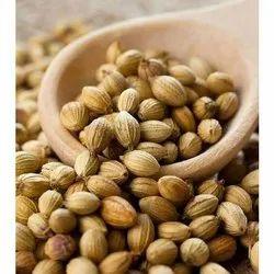 Brown Dried Coriander Seeds