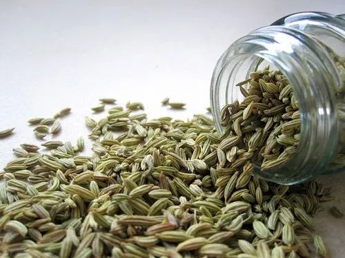 Florence Fennel Extract - Foeniculum Vulgare