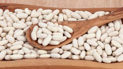White Kidney Beans, High in Protein