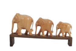 Wooden Elephant Row