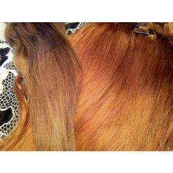 Bleached Hair Extension