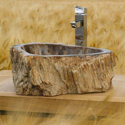 Petrified Wood Washbasin