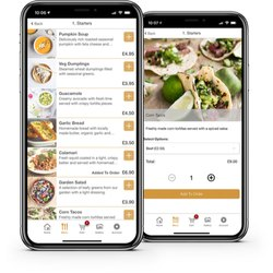 Food Ordering Application Development Service
