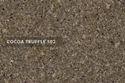 502 Truffle Rock